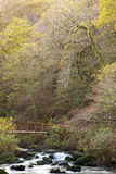 Watersmeet im Herbst Lizenzfreie Stockfotografie