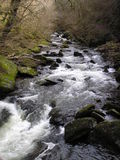 Watersmeet - River Lyn. View upstream of the River Lyn at Watersmeet near Lynton and Lynmouth, Exmoor National Park royalty free stock photos