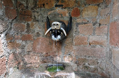 Waterspout in shape of a boar`s head, Marburg. Waterspout in shape of a boar`s head with running water, Marburg, Hesse, Germany Royalty Free Stock Photography