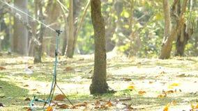 Watersproeier het bespuiten in de tuin stock footage