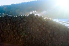 Waterstapel van logboeken royalty-vrije stock foto