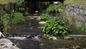 Waterstroom die onder steenmuren stroomt stock videobeelden