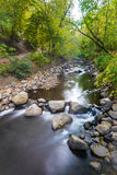 Waterstroom door bos Stock Afbeelding
