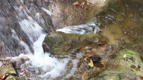 Waterstroom het stromende tegenkomen over rotsen en mos een beek van de waterval in het tropische bos stock videobeelden