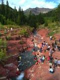 Waterton park narodowy - rewolucjonistka Rockowy jar obrazy royalty free