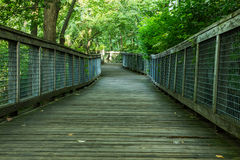 Free Watertown Trail Stock Photo - 32238990