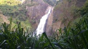 Waterval Stock Afbeeldingen