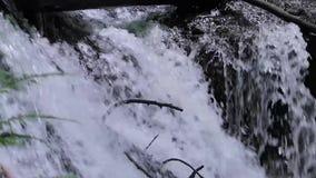 Waterval aan waterval stock video