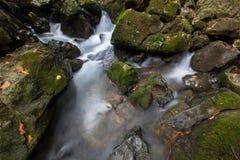 Waterval in aard op regenachtig seizoen in keerkringen stock foto's
