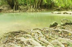 Waterval in aard Thailand Royalty-vrije Stock Foto's