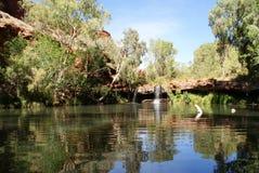 Waterval in Australië Royalty-vrije Stock Foto's