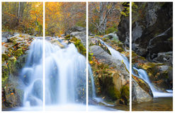 Waterval in Autumn Season Stock Foto's