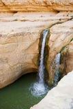 Waterval in bergoase Chebika Stock Fotografie