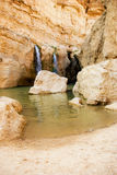 Waterval in bergoase Chebika Stock Afbeelding