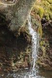 Waterval Bevroren Actie Stock Fotografie