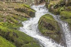 Waterval Bevroren Actie stock afbeelding