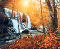 Waterval bij bergrivier in de herfstbos bij zonsondergang royalty-vrije stock foto's