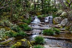 Waterval bij de Japanse tuin stock afbeelding