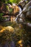 Waterval bij Foret-d'Aitone in Corsica, Frankrijk Stock Foto's