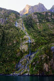 Waterval bij Milford-Geluid, Nieuw Zeeland Royalty-vrije Stock Fotografie