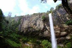 Waterval bij Raglan Stock Foto's