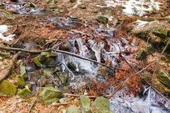 Waterval bij Smrk-berg dichtbij Ostravice-dorp Tsjechische Republiek, Beskydy-Bergen royalty-vrije stock afbeelding