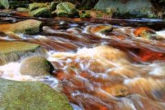 Waterval in bos Stock Afbeeldingen