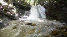 Waterval in bos Tropisch stock videobeelden