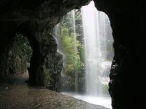 Waterval in botanische tuinen stock foto
