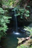 Waterval in Californische sequoiabos stock afbeeldingen