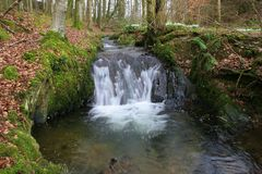 Waterval in Cally Wood Stock Afbeelding