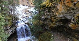 Waterval in canion, het Nationale Park van Banff, Canada 4K stock video