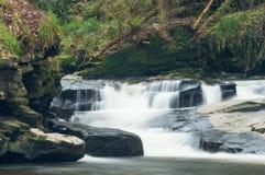 Waterval in Clare Glens Stock Foto's