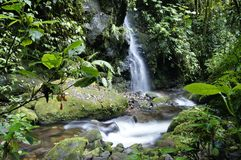 Waterval Costa Rica Royalty-vrije Stock Afbeeldingen