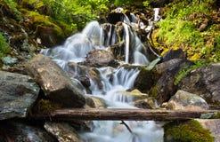 Waterval in de Alpen Stock Foto