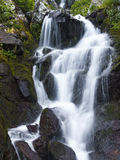 Waterval in de bergen Stock Fotografie
