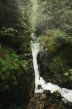Waterval in de bergen met groene vegetatie royalty-vrije stock fotografie