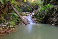 Waterval in de bergen van Adygea-republiek Rusland Stock Fotografie