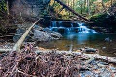 Waterval in de herfst op een kleine stroom dichtbij Ithaca, NY Stock Afbeeldingen