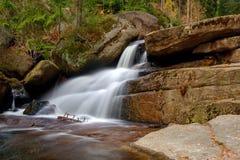 Waterval in de herfstbos stock afbeelding
