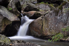 Waterval in de herfstbos Stock Foto