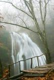 Waterval in de herfstbos Stock Afbeeldingen