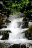 Waterval in de Kloof royalty-vrije stock foto