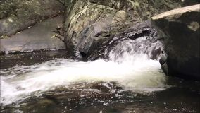 Waterval in de lente stock video