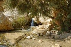 Waterval in de rotsen van het Dode Overzees van Ein Gedi Royalty-vrije Stock Afbeelding