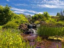 Waterval in de tuin Stock Foto