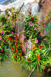 Waterval in de tuin Royalty-vrije Stock Afbeeldingen
