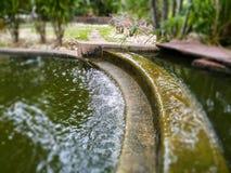 Waterval in de tuin Royalty-vrije Stock Afbeelding