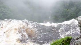 Waterval de waterval van het wildernisregenwoud stock footage