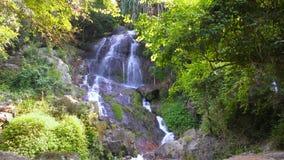 Waterval in de wildernis stock video